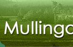 Mullingar Agricultural Show